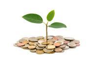 お金と草.jpg
